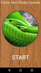 Funny Hiss Snake Sounds - náhled