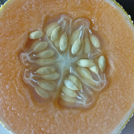 SYNERGY of SEEDS by Ved Thapar - Nature Up Close Gardens & Produce