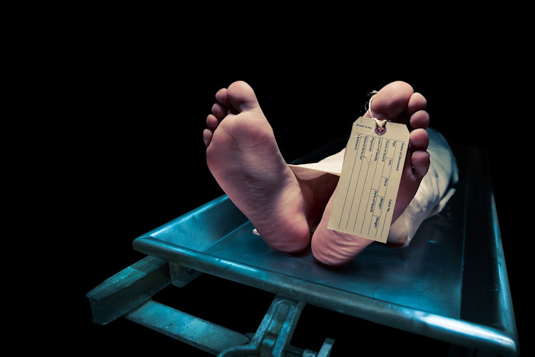 Searching for lost lives: SA's unidentified corpses