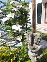 Al Colle 2_Torreglia_14