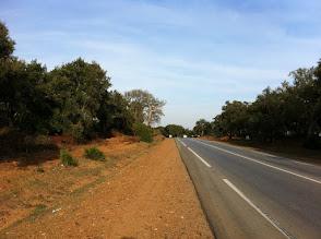 Photo: Road to Larache, it looks like the south of Iberian peninsula