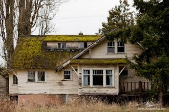 Photo: The Mossy Abandoned House