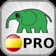 10000 spanish verbs PRO icon
