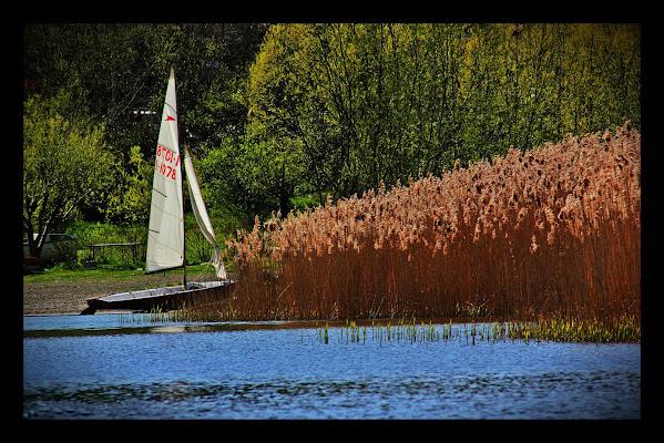 Il Lago d'estate di Tomassetti Sara