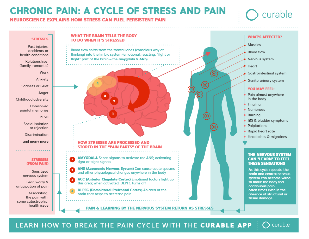 Chronic Pain a cycle of stress and pain. How Curable Works Infographic