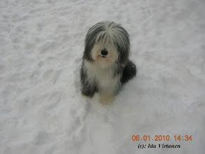 Photo: January 2010