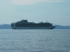 Photo: A cruise ship leaves Ketchikan in Tongass Narrows.
