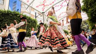 Los integrantes de la Asociación Folklórica Alcazaba han interpretado piezas de la música tradicional de distintos puntos de la provincia.