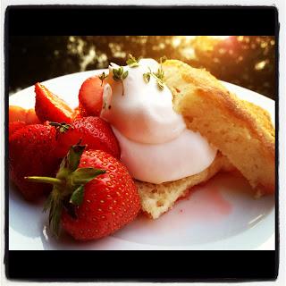 Sunset Strawberry Thyme Shortcake