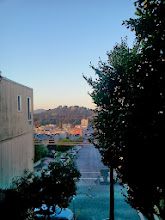 Photo: End of sixth full day of work (November 1, 2013): evening view from bottom third of the Hidden Garden Steps (16th Avenue, between Kirkham and Lawton streets in San Francisco's Inner Sunset District) as installation of the 148-step ceramic-tile mosaic designed and created by project artists Aileen Barr and Colette Crutcher continues. For more information about this volunteer-driven community-based project supported by the San Francisco Parks Alliance, the San Francisco Department of Public Works Street Parks Program, and hundreds of individual donors, please visit our website at http://hiddengardensteps.org.