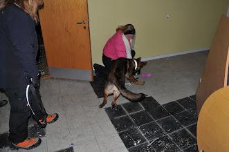 Photo: Dakota leker med figurant Torhild