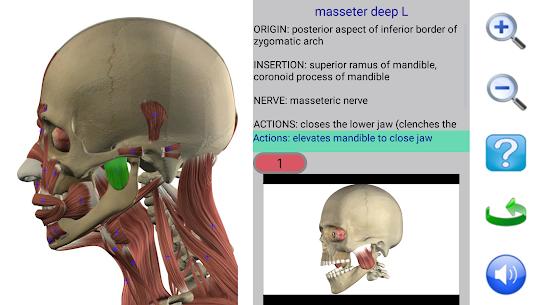 Visual Anatomy – Latest MOD APK 3
