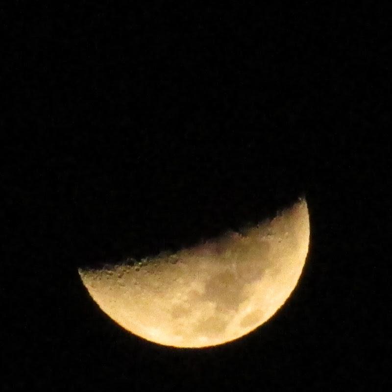 che fai tu luna in ciel? di pluto0762
