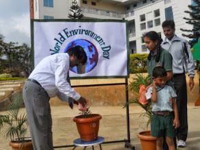 Photo: My gift to the School - a Sapling