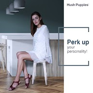 Hush Puppies photo 3