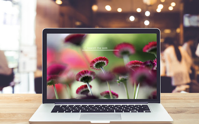 Little Flowers HD Wallpapers Floral Theme