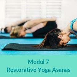 Restorative Yoga Modul 7