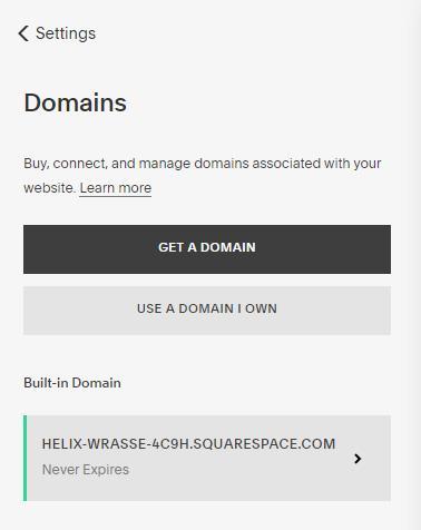 Squarespace domain options