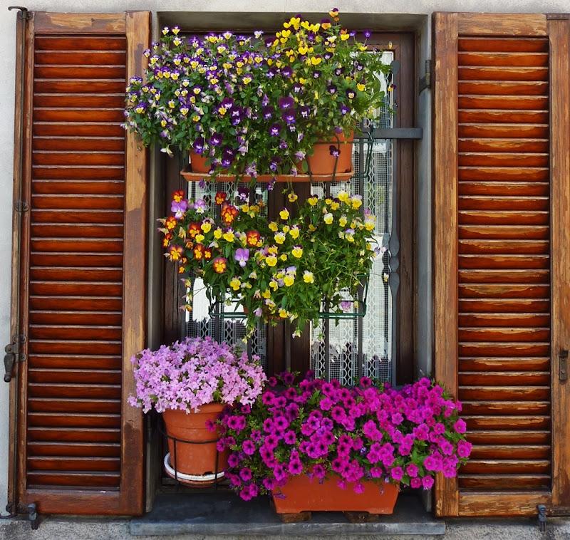 Addobbi floreali di FransuaR
