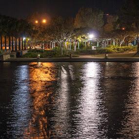 Lit up by Mark Luyt - City,  Street & Park  City Parks ( reflection, light, reflections, night, shadows, lake, park, lights )