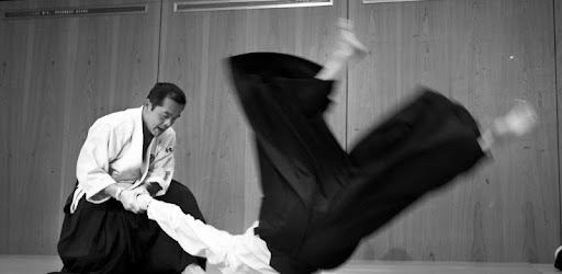 Aikido Training Apps On Google Play