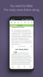 橄欖樹留言聖經