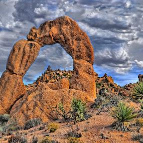 Arrastra Arch by Stephen Botel - Landscapes Deserts ( clouds, wildflowers, mountains, wilderness, desert, arch, arizona, yecca, landscape, desertscape, rocks, cactus )
