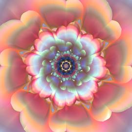 Flower 23 by Cassy 67 - Illustration Abstract & Patterns ( love, abstract art, digital art, wallpaper, power, bloom, fractal, light, digital, fractals, blossom, flower )