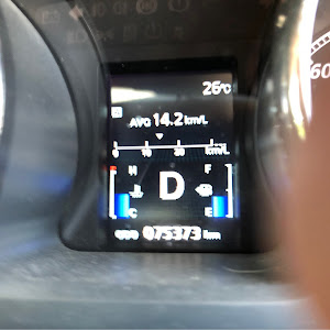 デリカD:5 CV2W ローデスト G-POWERのカスタム事例画像 学さんの2020年05月24日16:49の投稿