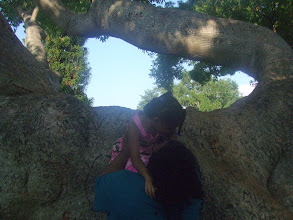 Photo: I tried to help Kaleya in the tree but she wasn't going for it too much