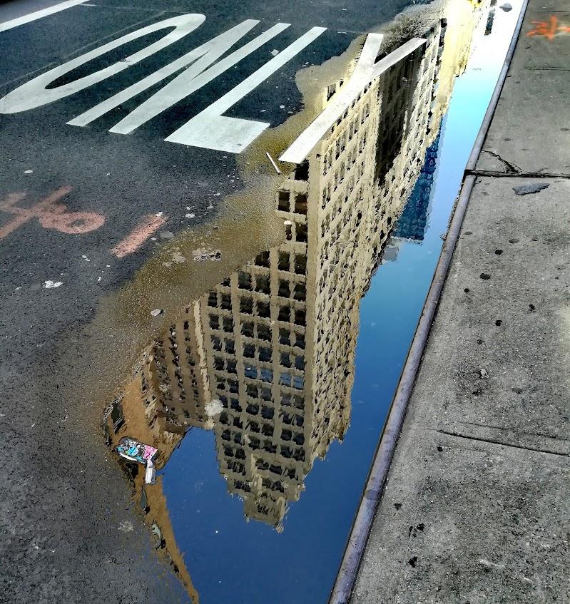 34th street di ELISABETTA RIZZO
