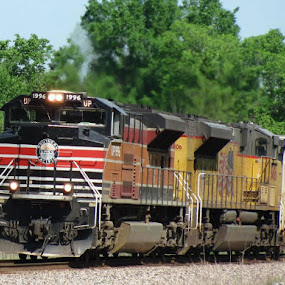 Southern Pacific Heritage by Rick Covert - Transportation Trains ( railroad, locomotive, arkansas, railroad tracks, heritage, trains )