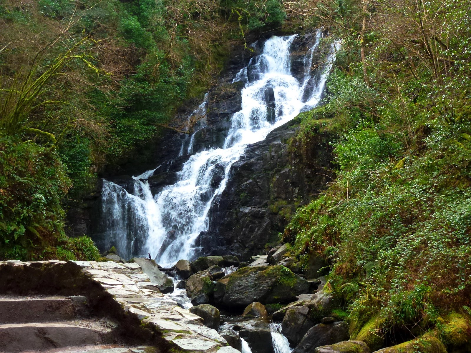 torc waterfall, killarney.jpg