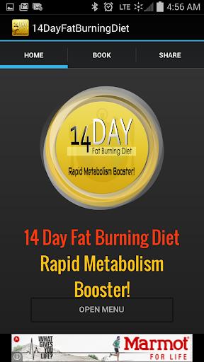 14 Day Fat Burning Diet