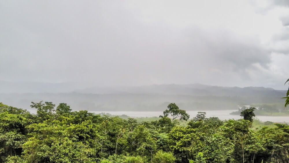 cloudy day manu park Amazon Rainforest Peru