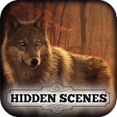 Hidden Scenes - Free Beautiful Wolves Puzzle Game