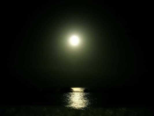 Luna...luminosa e sola... di penelope