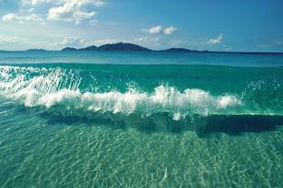 Origen de la salinidad del agua de los océanos.