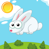 MR Jumper Rabbit Game