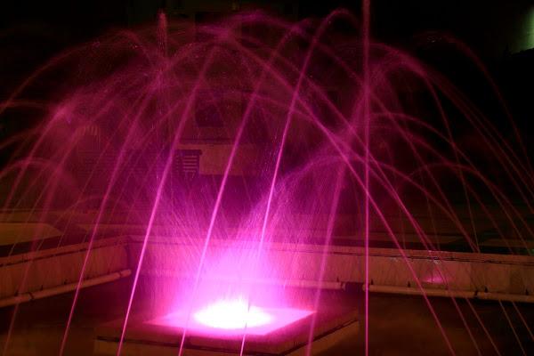 nella notte... lo zampillo si tinge di rosa di ariosa