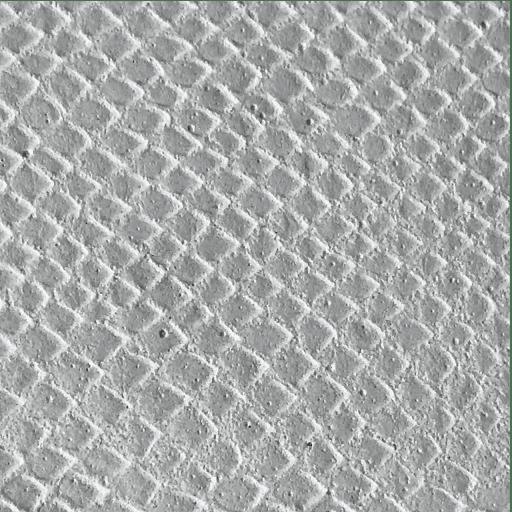 béton imprimé croco blanc