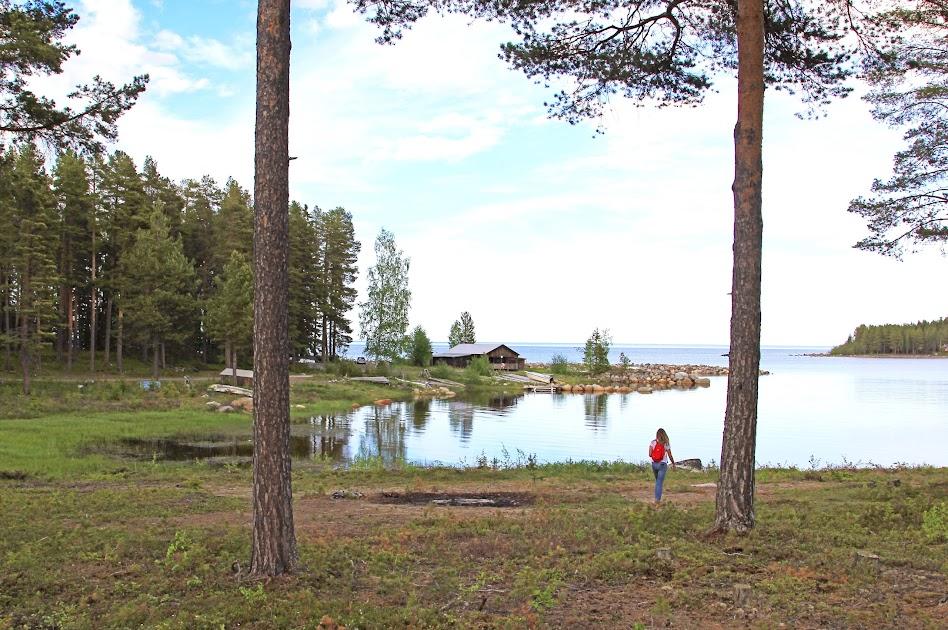 Lapland-in-de-zomer