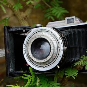 Camera by Bhaskar Patra - Artistic Objects Other Objects ( camera )