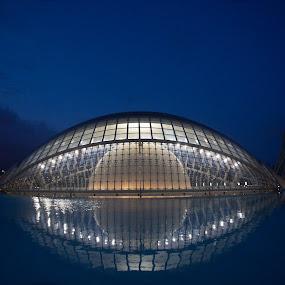 Ciudad de las Artes y las Ciencias by VAM Photography - Buildings & Architecture Other Exteriors ( spain, valencia, exterior, sunset, travel, architecture,  )