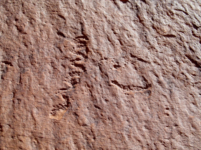 Patinated petroglyphs