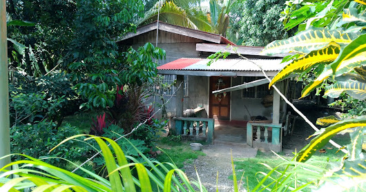 House and lot for sale in Capayuran