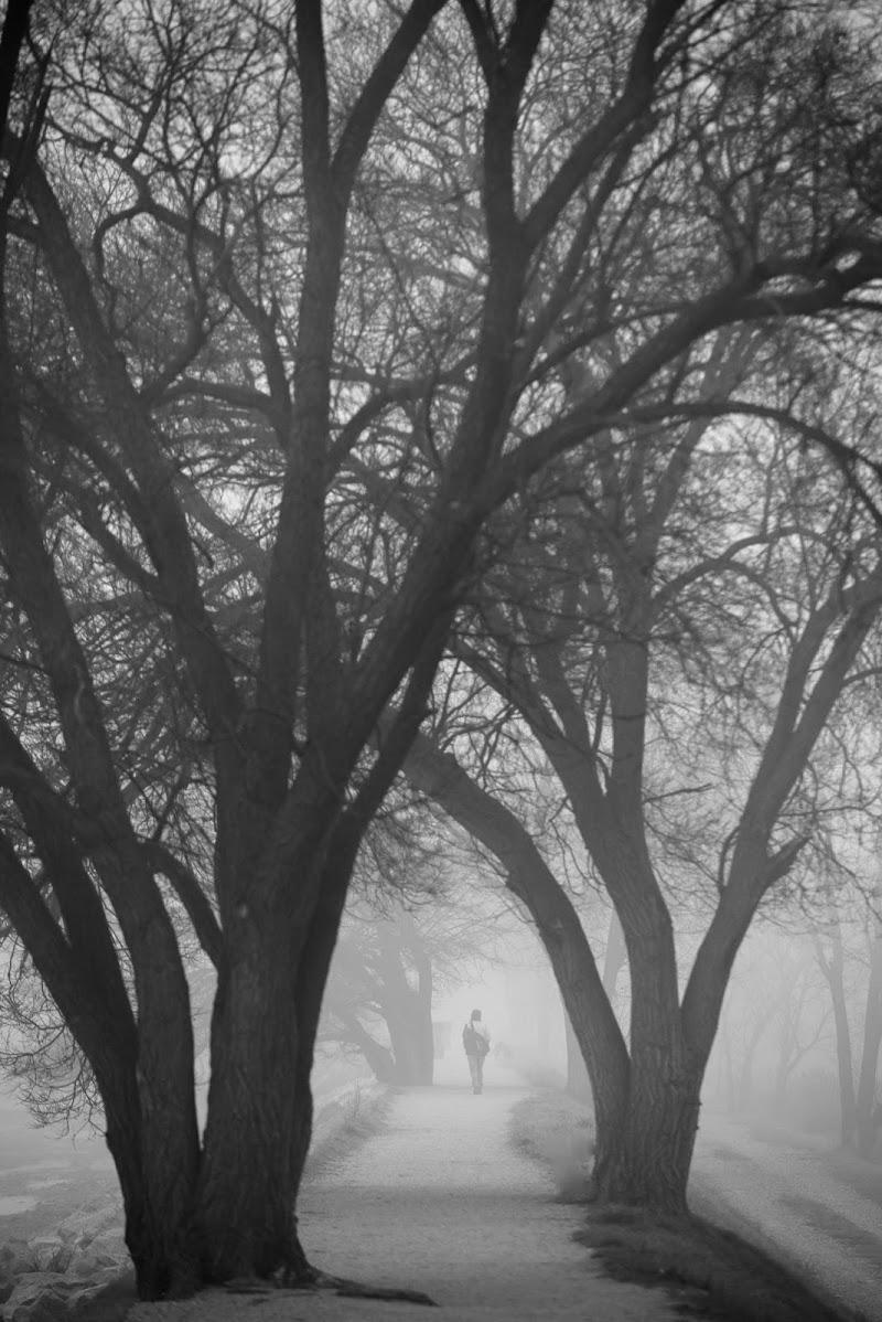 Sentiero mistico di Peter_Sossi