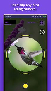 Bird Identifier Screenshot