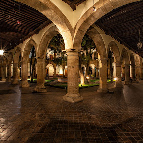 Museo Regional de Guadalajara by Gliserio Castañeda G - Buildings & Architecture Public & Historical