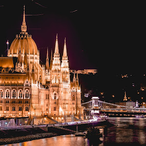 Parliament at night by Mo Kazemi - Buildings & Architecture Public & Historical ( budapest hungary, city, night, riverside, parliament, hungary, nightscape, cityscape, budapest, river, night scene, europe, night photography )